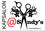 logo-sandys